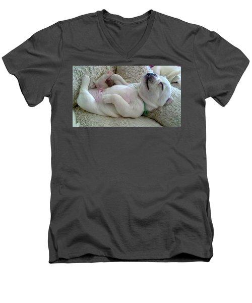 Puppy Dog Dreams Men's V-Neck T-Shirt