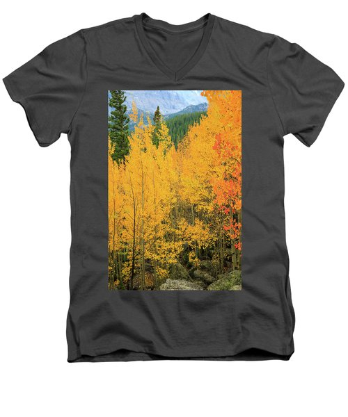 Men's V-Neck T-Shirt featuring the photograph Pure Gold by David Chandler