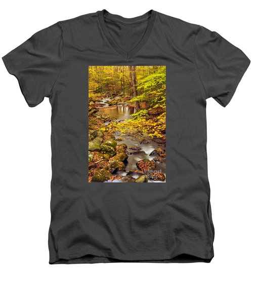 Men's V-Neck T-Shirt featuring the photograph Pure Gold by Debbie Green