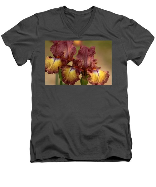 Men's V-Neck T-Shirt featuring the photograph Purple And Yellow Bearded Iris by Sheila Brown