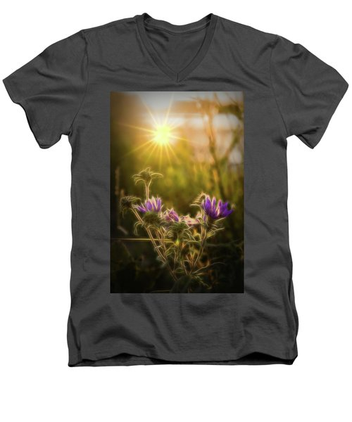 Purple Aster Glow Men's V-Neck T-Shirt