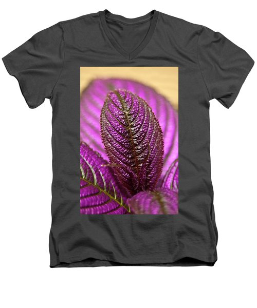 Purple Coleus Men's V-Neck T-Shirt