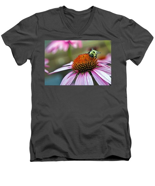Purple Cone Flower And Bee Men's V-Neck T-Shirt