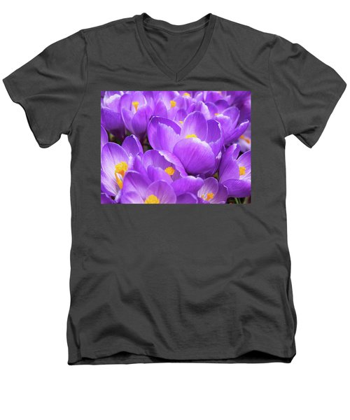 Purple Crocuses Men's V-Neck T-Shirt
