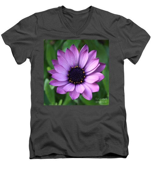 Purple Daisy Square Men's V-Neck T-Shirt