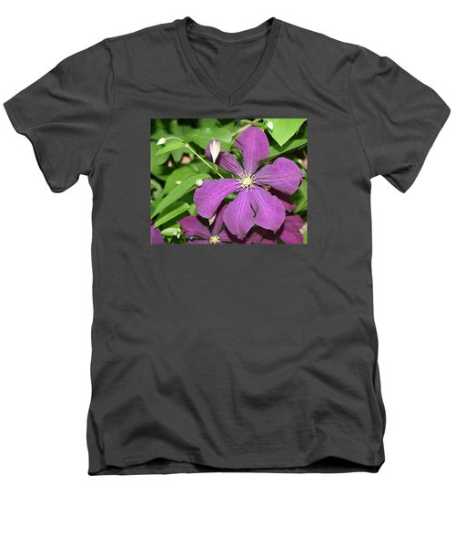 Purple Delite Men's V-Neck T-Shirt