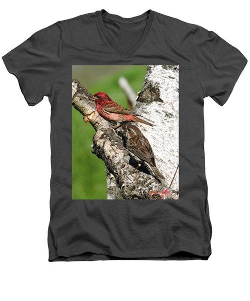 Men's V-Neck T-Shirt featuring the digital art Purple Finches by John Selmer Sr