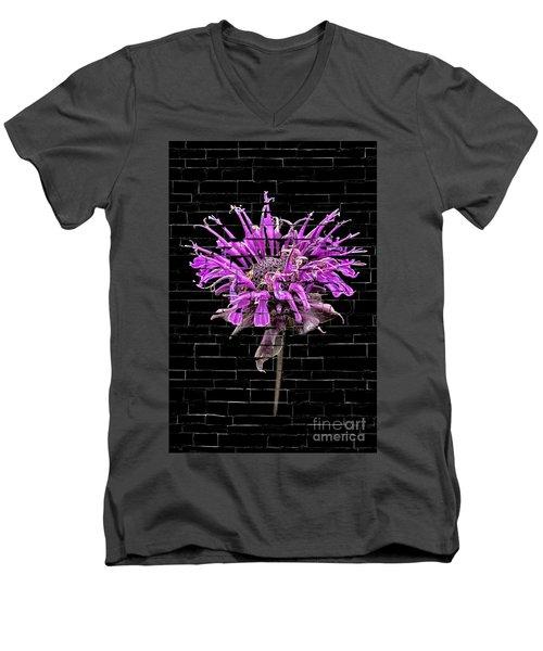 Purple Flower Under Bricks Men's V-Neck T-Shirt by Walt Foegelle