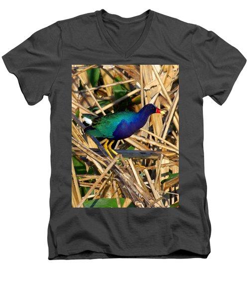 Men's V-Neck T-Shirt featuring the photograph Purple Galinule 003 by Chris Mercer