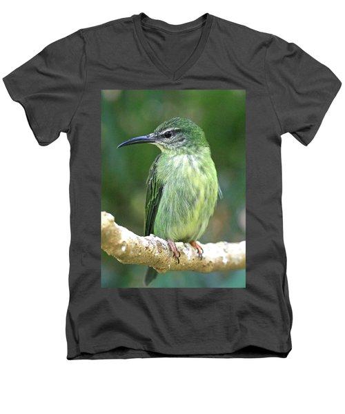 Purple Honeycreeper Female Men's V-Neck T-Shirt