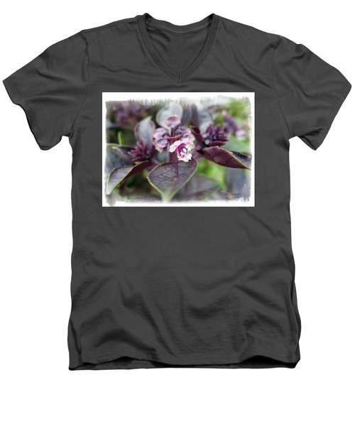 Men's V-Neck T-Shirt featuring the photograph Purple In Autumn by Joan  Minchak