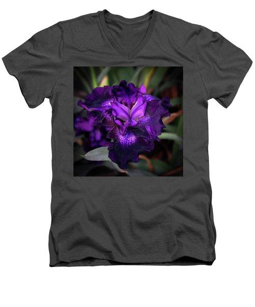 Purple Iris 5994 H_2 Men's V-Neck T-Shirt