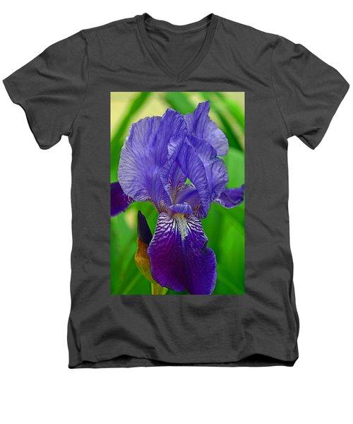 Purple Iris Men's V-Neck T-Shirt