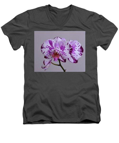 Purple Moth Orchid Men's V-Neck T-Shirt by Kathy Eickenberg