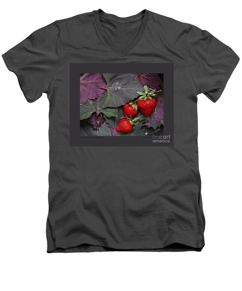 Men's V-Neck T-Shirt featuring the photograph Purple Orach With Strawberries by Patricia Overmoyer