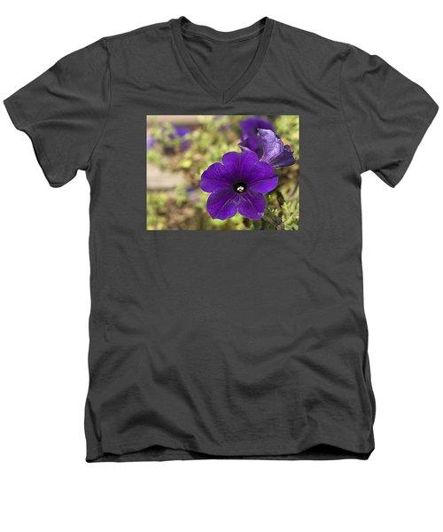 Purple Petunias Men's V-Neck T-Shirt