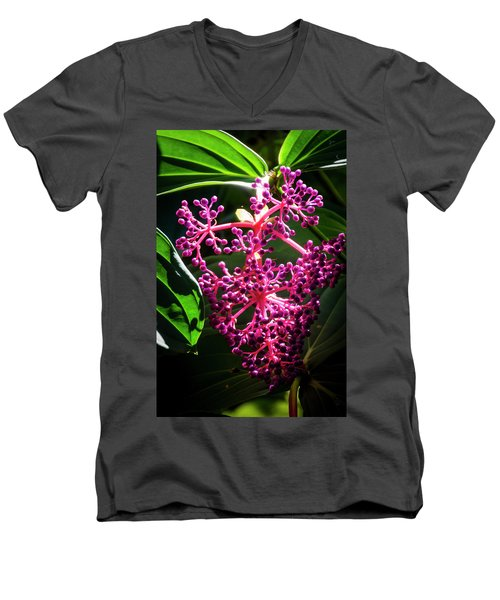 Purple Plant Men's V-Neck T-Shirt