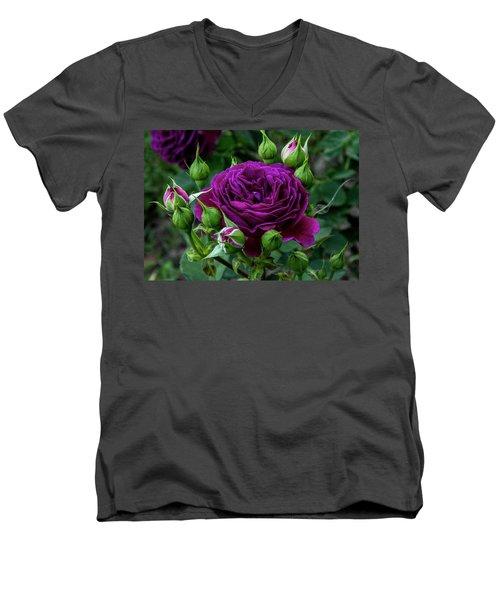 Purple Rose Men's V-Neck T-Shirt by Alex Galkin