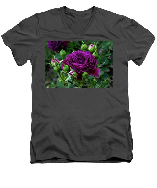 Purple Rose Men's V-Neck T-Shirt
