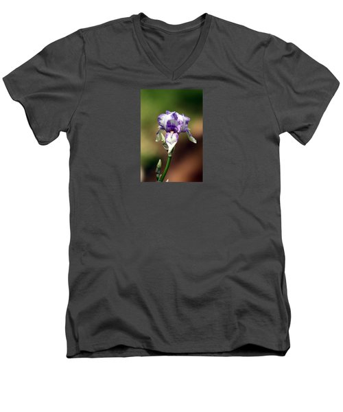 Men's V-Neck T-Shirt featuring the photograph Purple Striped Bearded Iris by Sheila Brown