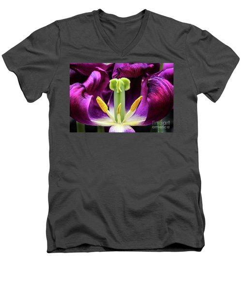 Purple Tulip Macro Men's V-Neck T-Shirt