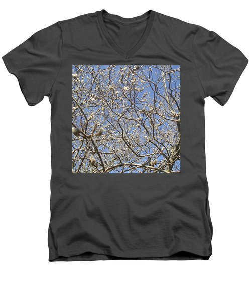 Pussywillows Bursting To Life Men's V-Neck T-Shirt by Roger Swezey