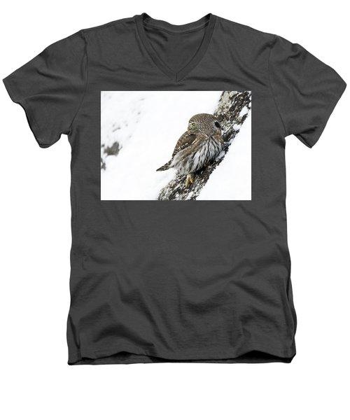 Pygmy Owl Men's V-Neck T-Shirt