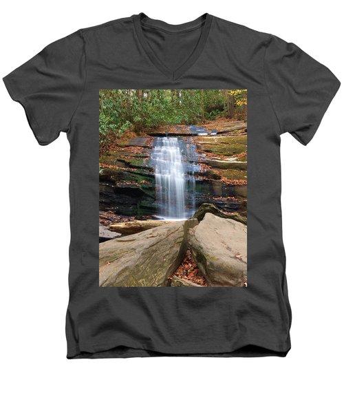 Quaint Men's V-Neck T-Shirt