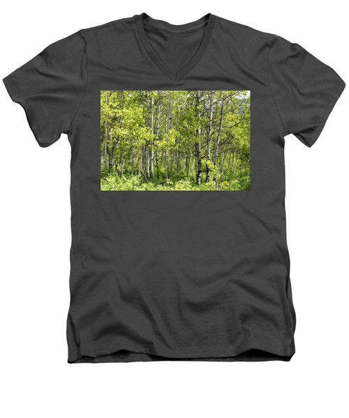 Men's V-Neck T-Shirt featuring the photograph Quaking Aspens 2 by Cynthia Powell