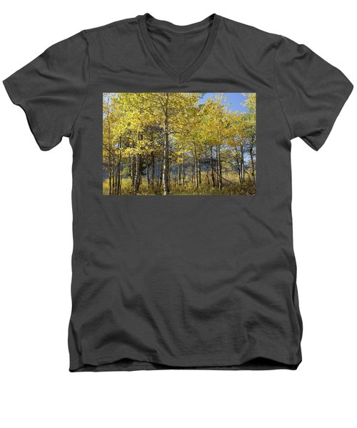 Men's V-Neck T-Shirt featuring the photograph Quaking Aspens by Cynthia Powell