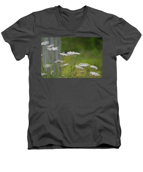 Queen Anne Lace Wildflowers Men's V-Neck T-Shirt by Maria Urso