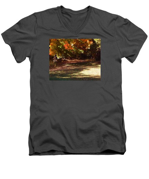 Quiet Picnic Place Men's V-Neck T-Shirt