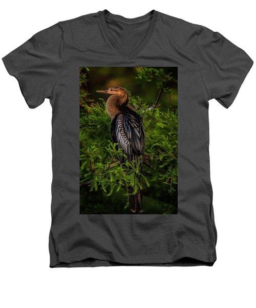 Quietude Men's V-Neck T-Shirt by Cyndy Doty