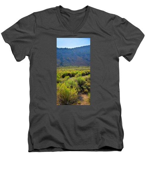 Rabbit Brush In Bloom Men's V-Neck T-Shirt