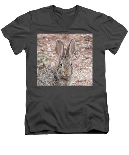 Rabbit Stare Men's V-Neck T-Shirt