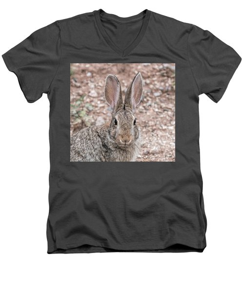 Rabbit Stare Men's V-Neck T-Shirt