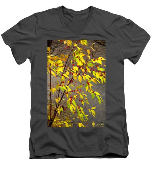 Raccoon Snacks Men's V-Neck T-Shirt