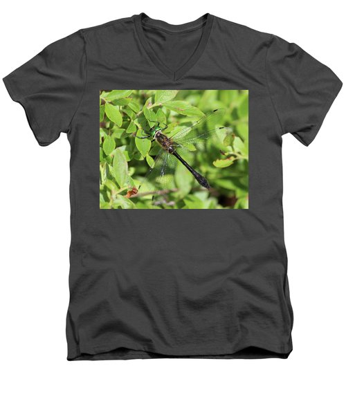 Racket-tailed Emerald  Men's V-Neck T-Shirt