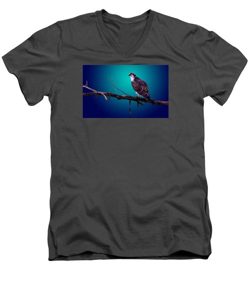 Radiant Raptor Men's V-Neck T-Shirt