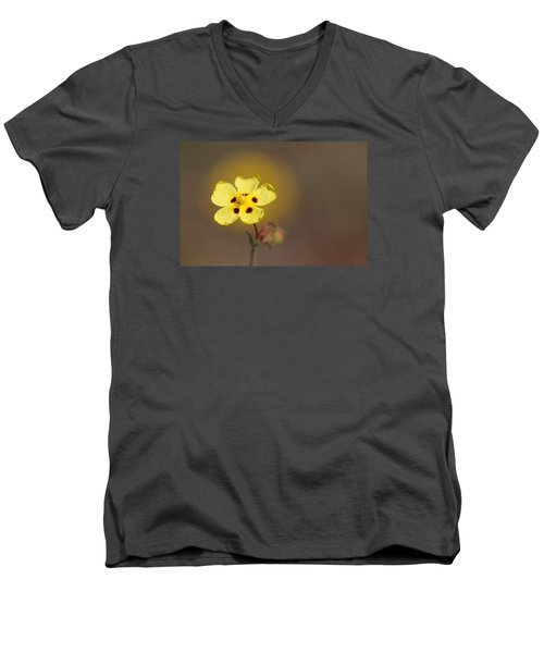 Men's V-Neck T-Shirt featuring the photograph Radiate by Richard Patmore