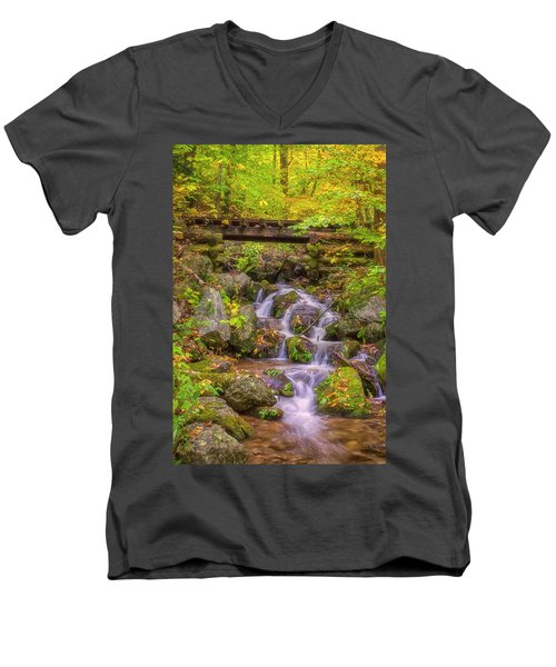 Railroad In The Woods Men's V-Neck T-Shirt