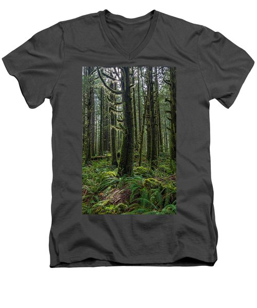 Rain Forest Of Golden Ears Men's V-Neck T-Shirt by Pierre Leclerc Photography