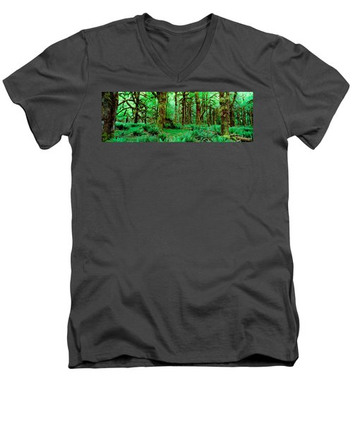 Rain Forest, Olympic National Park Men's V-Neck T-Shirt by Panoramic Images
