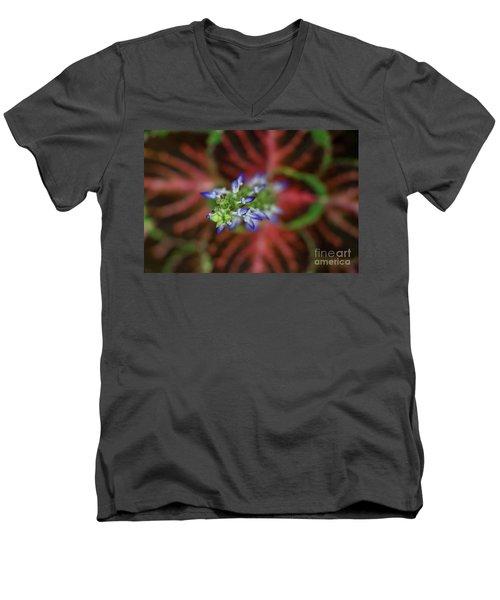 Rainbow Coleus Men's V-Neck T-Shirt