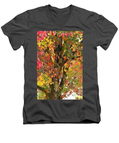 Rainbow Maple Men's V-Neck T-Shirt
