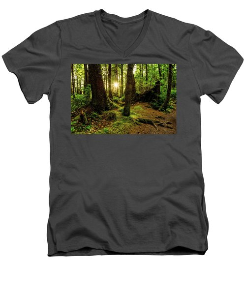 Rainforest Path Men's V-Neck T-Shirt by Chad Dutson
