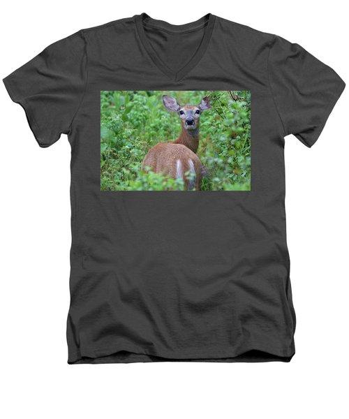 Rainy Day Doe Men's V-Neck T-Shirt