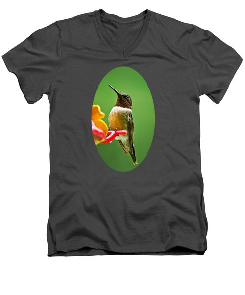 Rainy Day Hummingbird Men's V-Neck T-Shirt by Christina Rollo