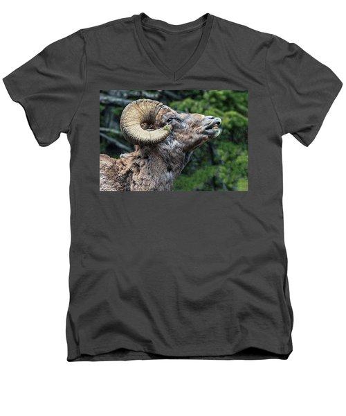 Ram Alert Men's V-Neck T-Shirt