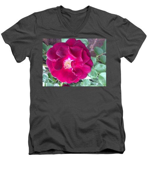 Rambling Rose Men's V-Neck T-Shirt